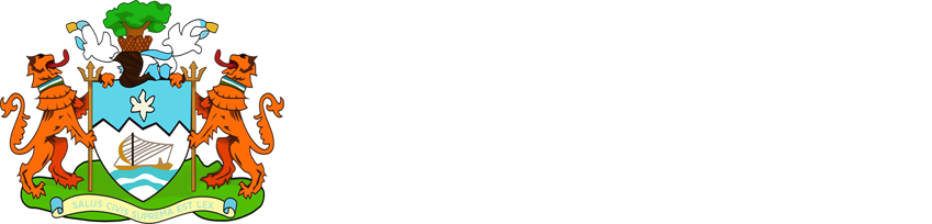 Freetown City Council